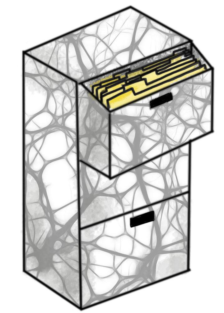 Neurological File Cabinets